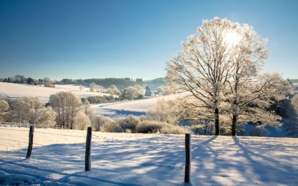 Photography Winter HD Wallpaper | Background Image