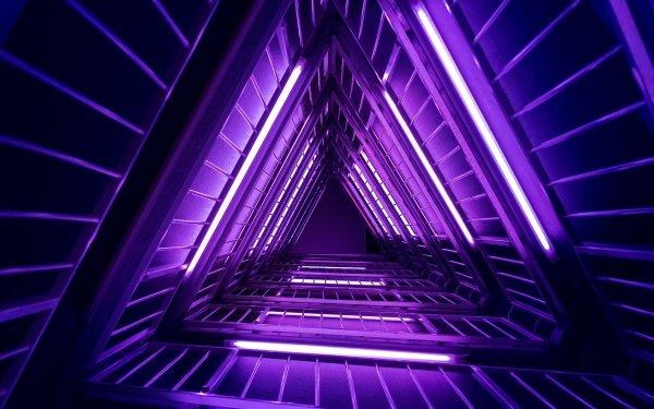 Artistic Neon Neon Sign Purple HD Wallpaper | Background Image