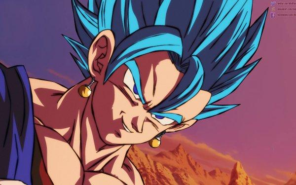Anime Dragon Ball Super: Broly Vegetto Super Saiyan Blue HD Wallpaper | Background Image