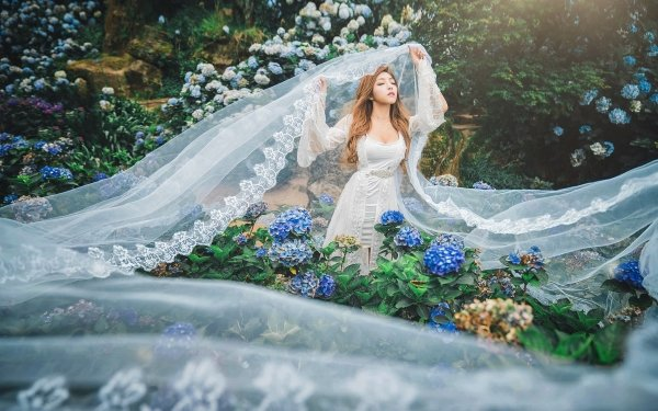Women Asian Flower White Dress Hydrangea Blue Flower Model Long Hair Brunette Mood HD Wallpaper | Background Image