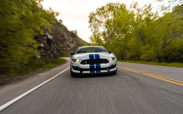 Vehicles Ford Mustang Shelby GT500 Ford Ford Mustang Car Muscle Car HD Wallpaper   Background Image