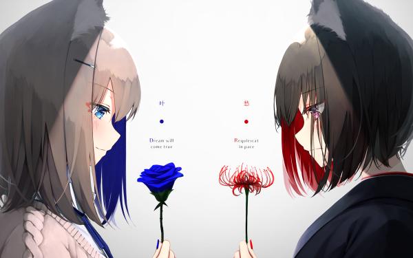 Anime Original Animal Ears Black Hair Blue Eyes Red Eyes Blue Rose Red Flower Short Hair HD Wallpaper   Background Image
