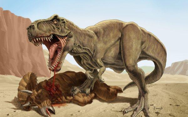 Animal Dinosaur Tyrannosaurus Rex Triceratops HD Wallpaper   Background Image