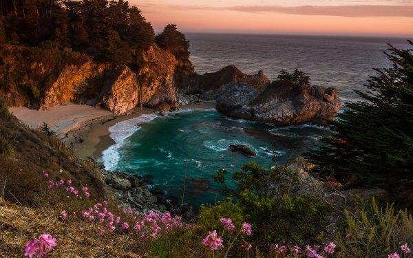 Earth Big Sur Tree Landscape Sunset Flower Ocean Rock Coast Waterfall HD Wallpaper   Background Image