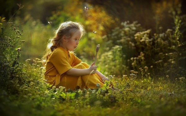 Photography Child Bee Nature HD Wallpaper   Background Image