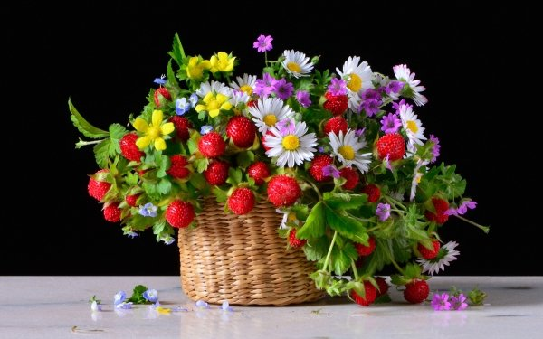 Food Still Life Basket Bouquet Chamomile Strawberry Flower Berry HD Wallpaper   Background Image