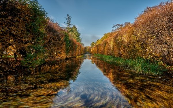 Earth River Fall Hedge Reflection HD Wallpaper | Background Image