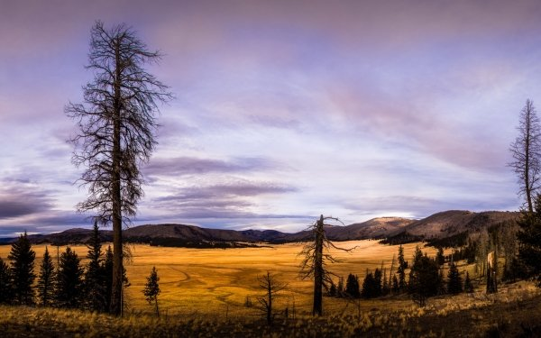 Earth Landscape Mountain Nature Valley United States New Mexico HD Wallpaper | Background Image
