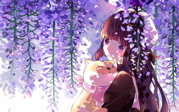 Anime Cardcaptor Sakura Tomoyo Daidouji HD Wallpaper   Background Image