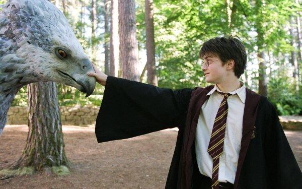 Movie Harry Potter and the Prisoner of Azkaban Harry Potter Daniel Radcliffe HD Wallpaper   Background Image