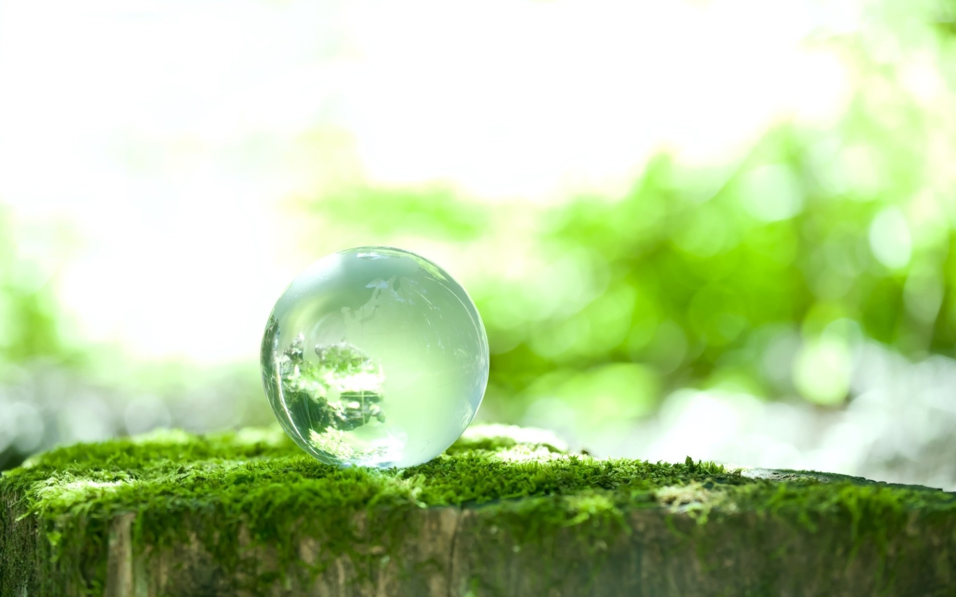 Earth - Spring  Season Green Orb Sphere Marble Moss Glass Wallpaper
