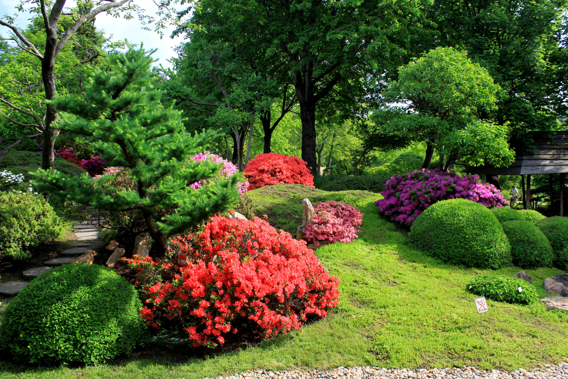 Garden Full Hd Wallpaper And Background 2400x1600 Id