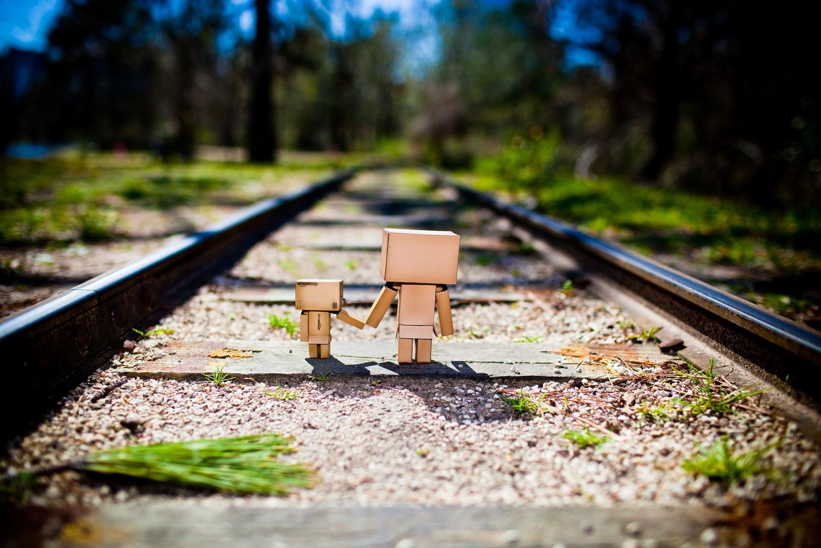Danbo Wallpaper And Background Image 1600x1067 Id300894
