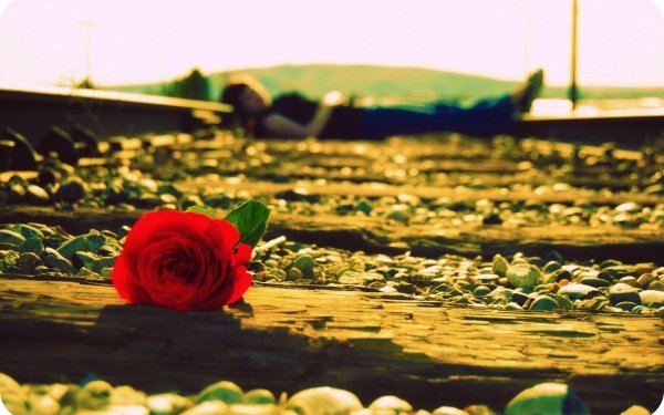 Women Gothic Flower Railroad Emo Mood HD Wallpaper | Background Image