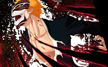 Anime - Bleach Wallpapers and Backgrounds ID : 302126
