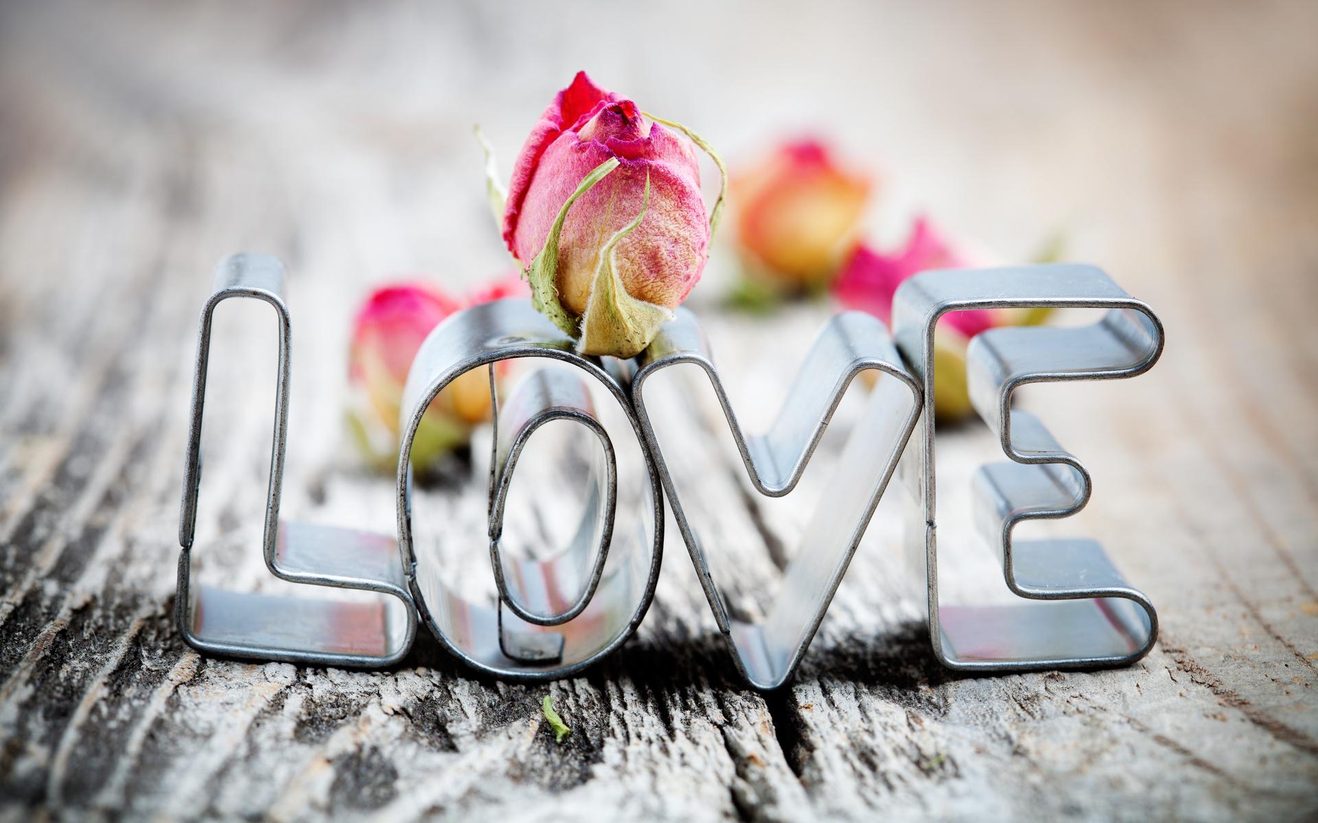 Love Hd Wallpaper Background Image 1920x1200 Id305564