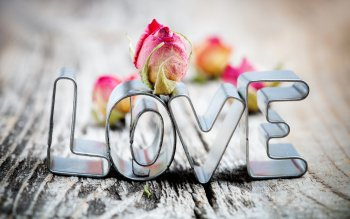 Photography - Love Wallpapers and Backgrounds ID : 305564