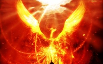 Fantasy - Phoenix Wallpapers and Backgrounds ID : 307448