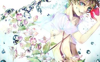 HD Wallpaper | Background ID:308548
