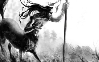 Fantasy - Centaur Wallpapers and Backgrounds ID : 309356