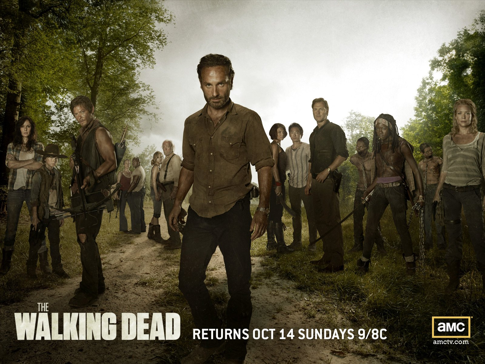 ... Sunlight The Walking Dead · HD Wallpaper | Background Image ID:310538