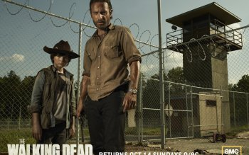 TV Show - The Walking Dead Wallpapers and Backgrounds ID : 310540
