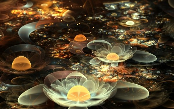 HD Wallpaper | Background Image ID:312800