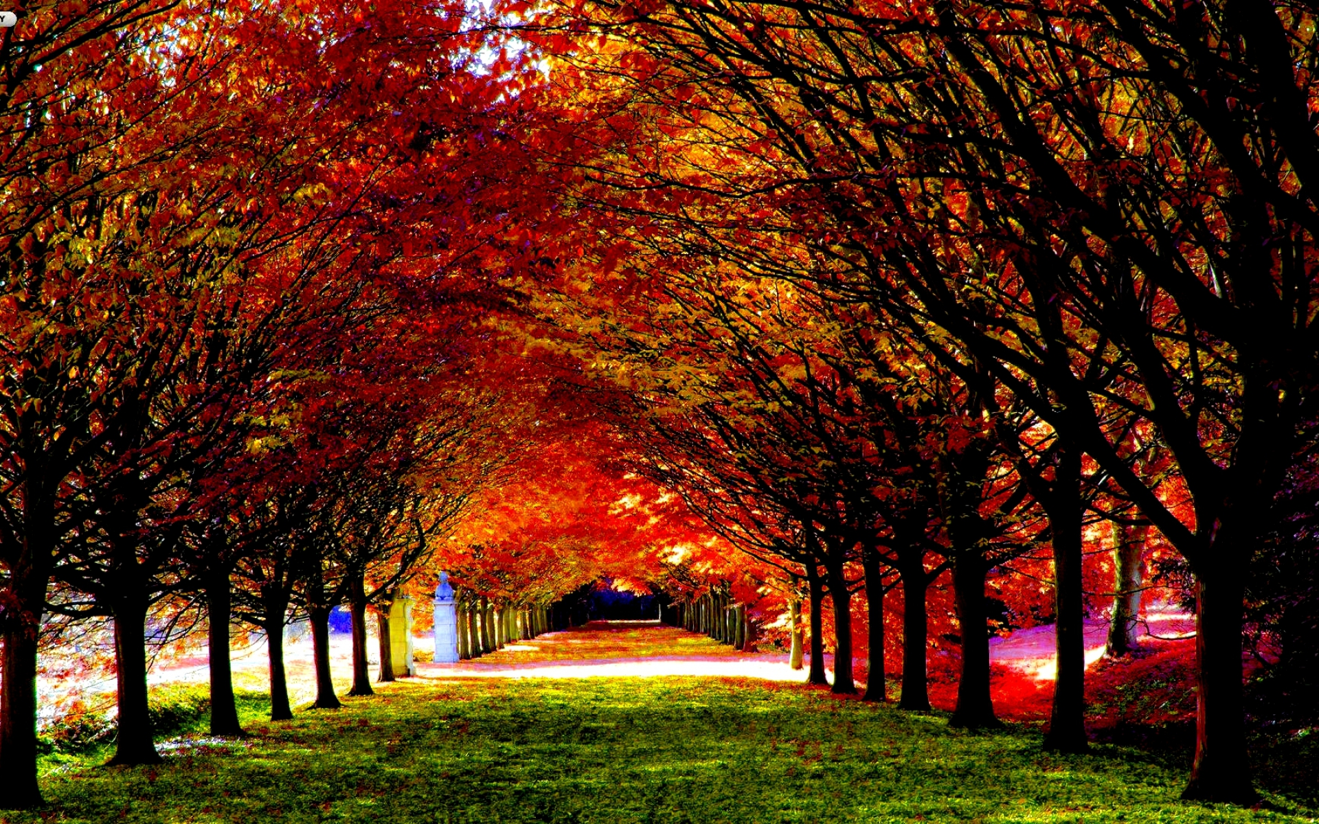 Fall hd wallpaper background image 1920x1200 id - Seasons wallpaper backgrounds ...