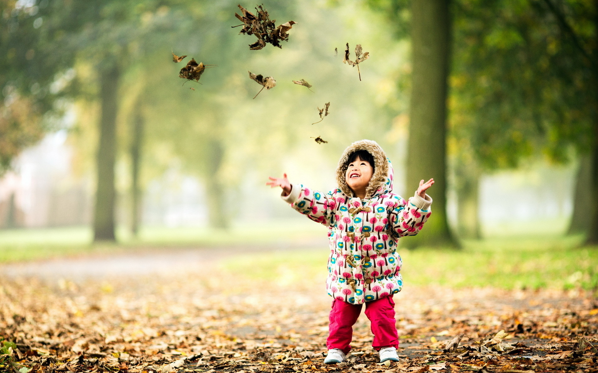 Child Full HD Wallpaper And Background Image