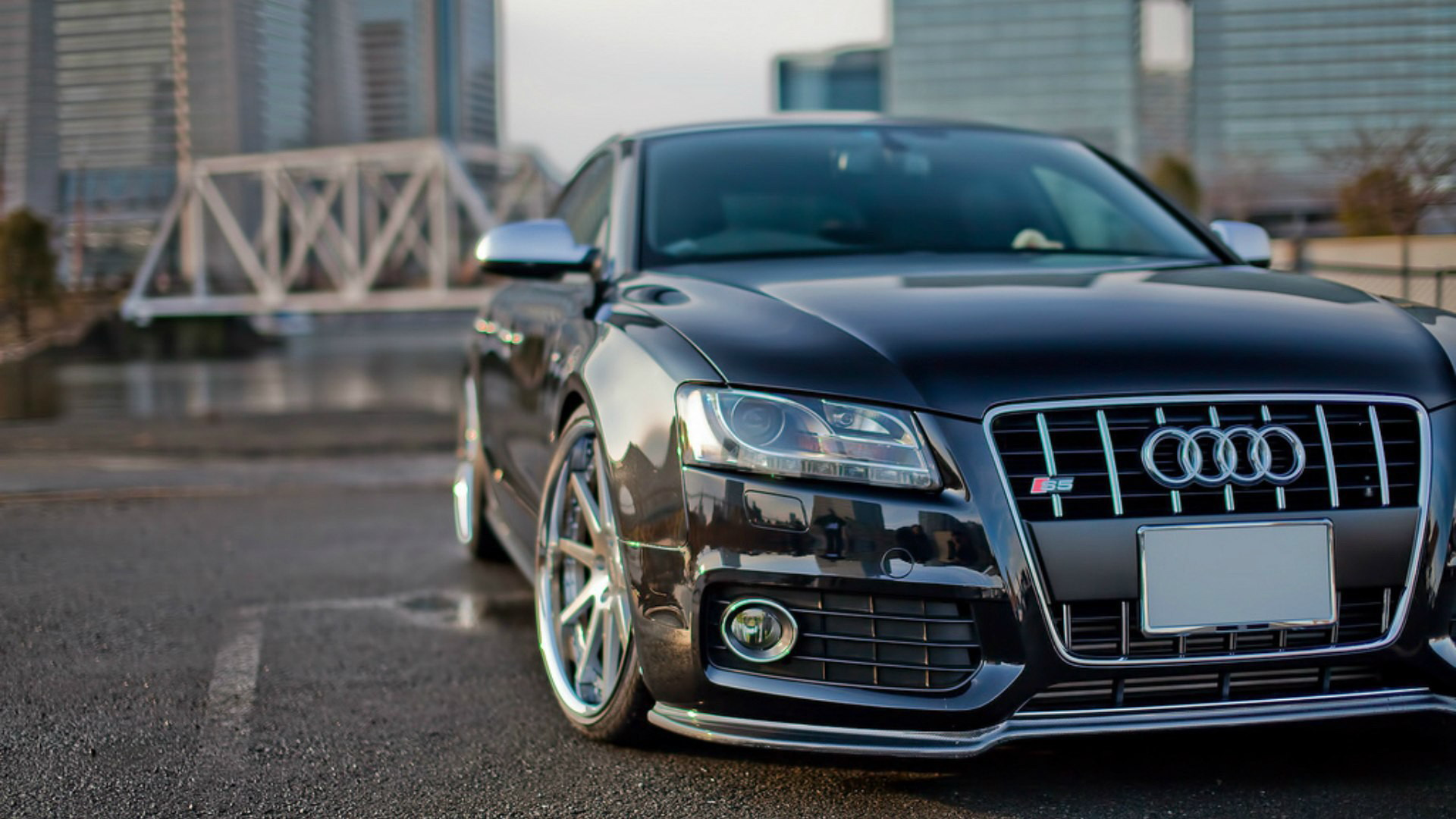 Audi Full HD Wallpaper And Background Image