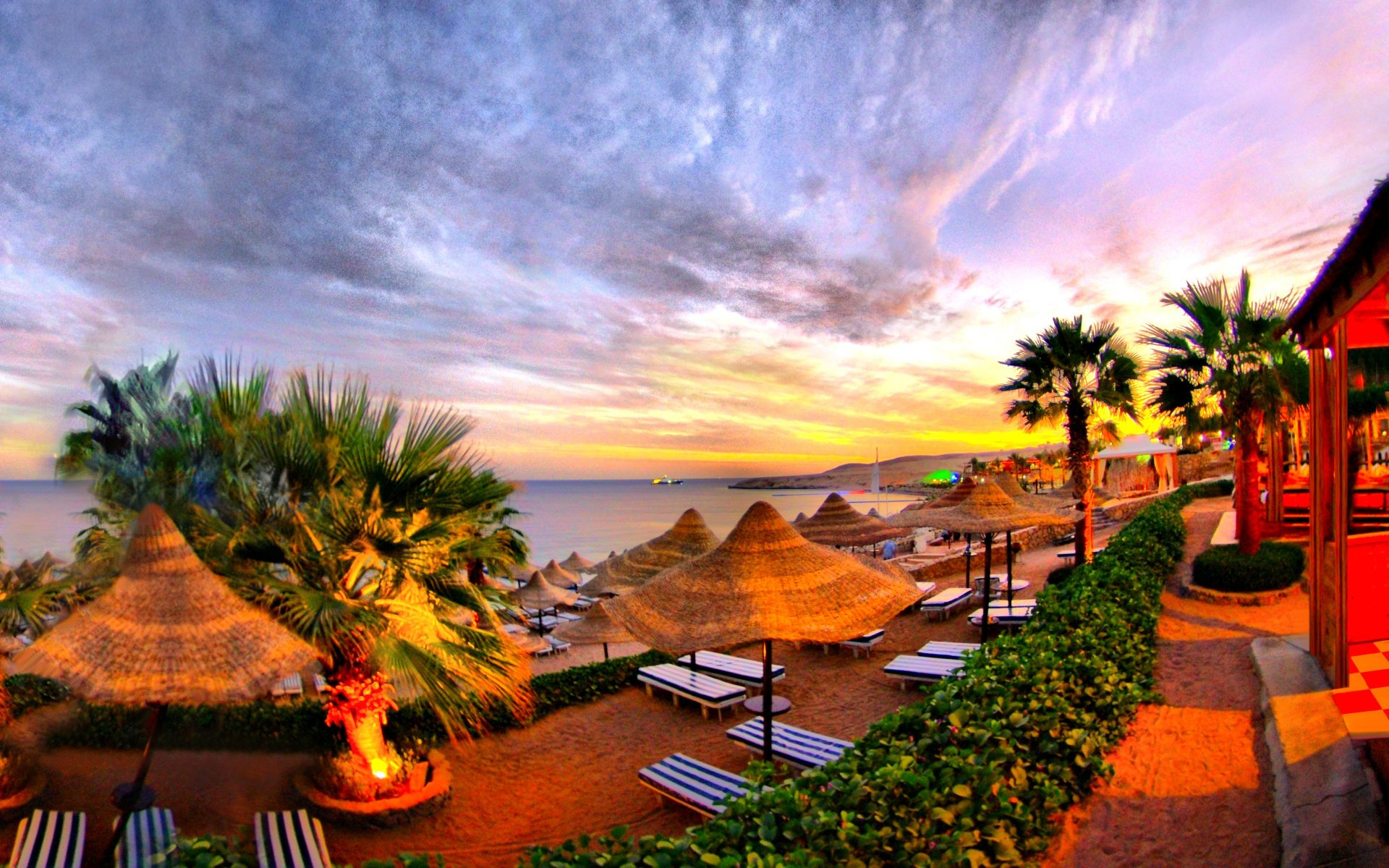Photography - Tropical  Sky Summer Sunset Palm Tree Resort Wallpaper
