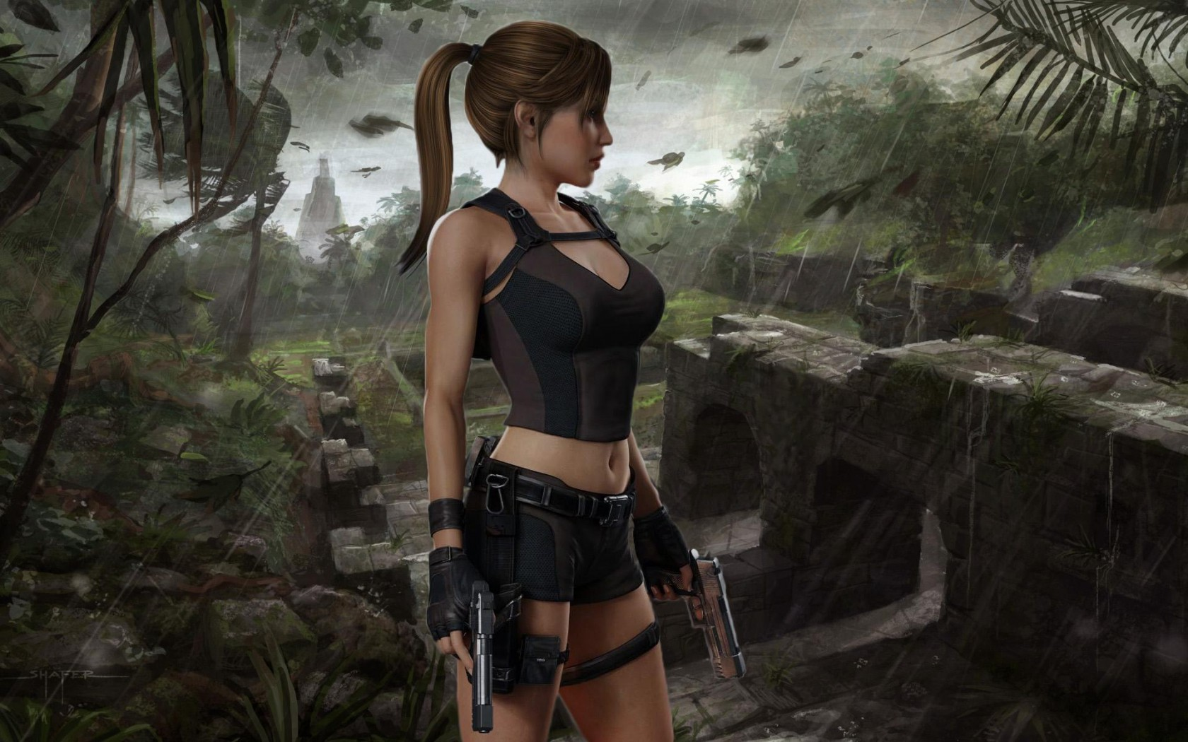 Tomb Raider Wallpaper And Background Image  1680X1050  Id322131 - Wallpaper Abyss-8858