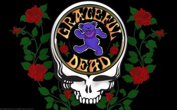 Music - Grateful Dead Wallpapers and Backgrounds ID : 322130