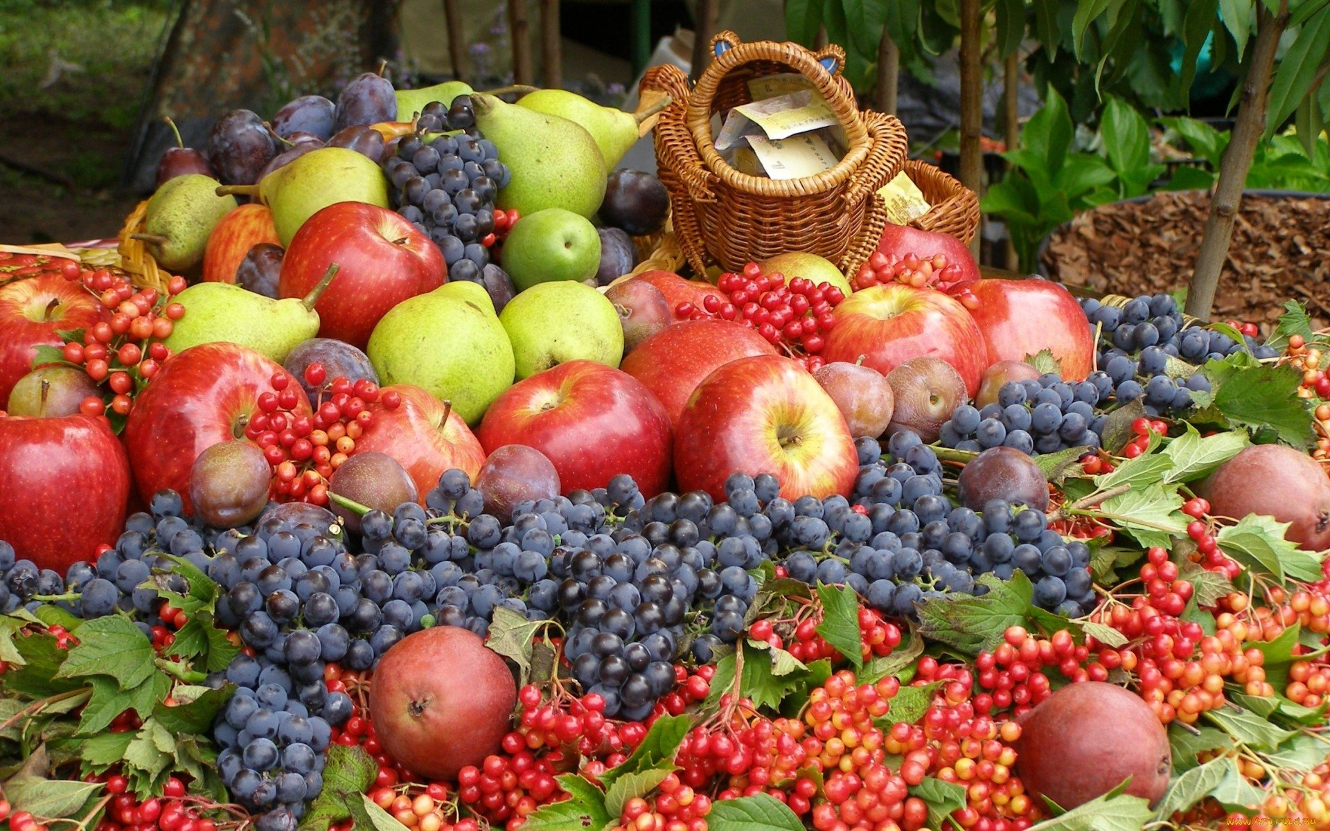 Food - Fruit  Apple Grapes Wallpaper