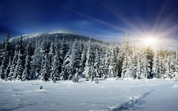 Earth - Winter Wallpapers and Backgrounds ID : 326593