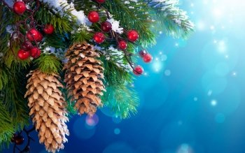 Holiday - Christmas Wallpapers and Backgrounds ID : 329558