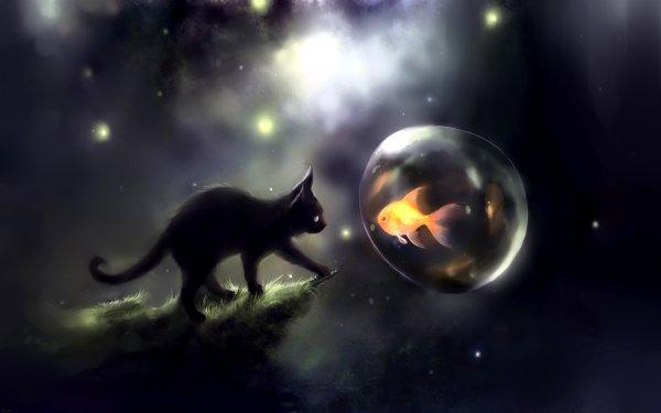 Animal Artistic Cat Fish Fantasy HD Wallpaper   Background Image