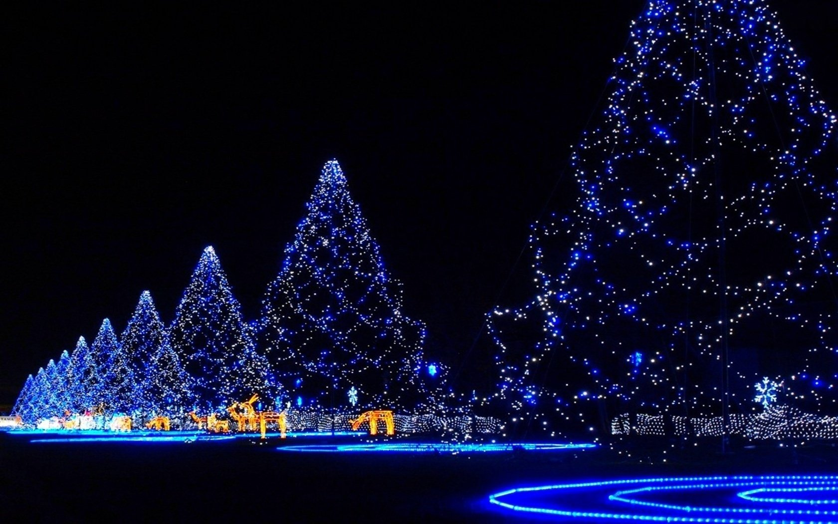 Winter christmas lights backgrounds pictures