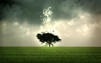 Abstract - Tree Wallpapers and Backgrounds ID : 334522
