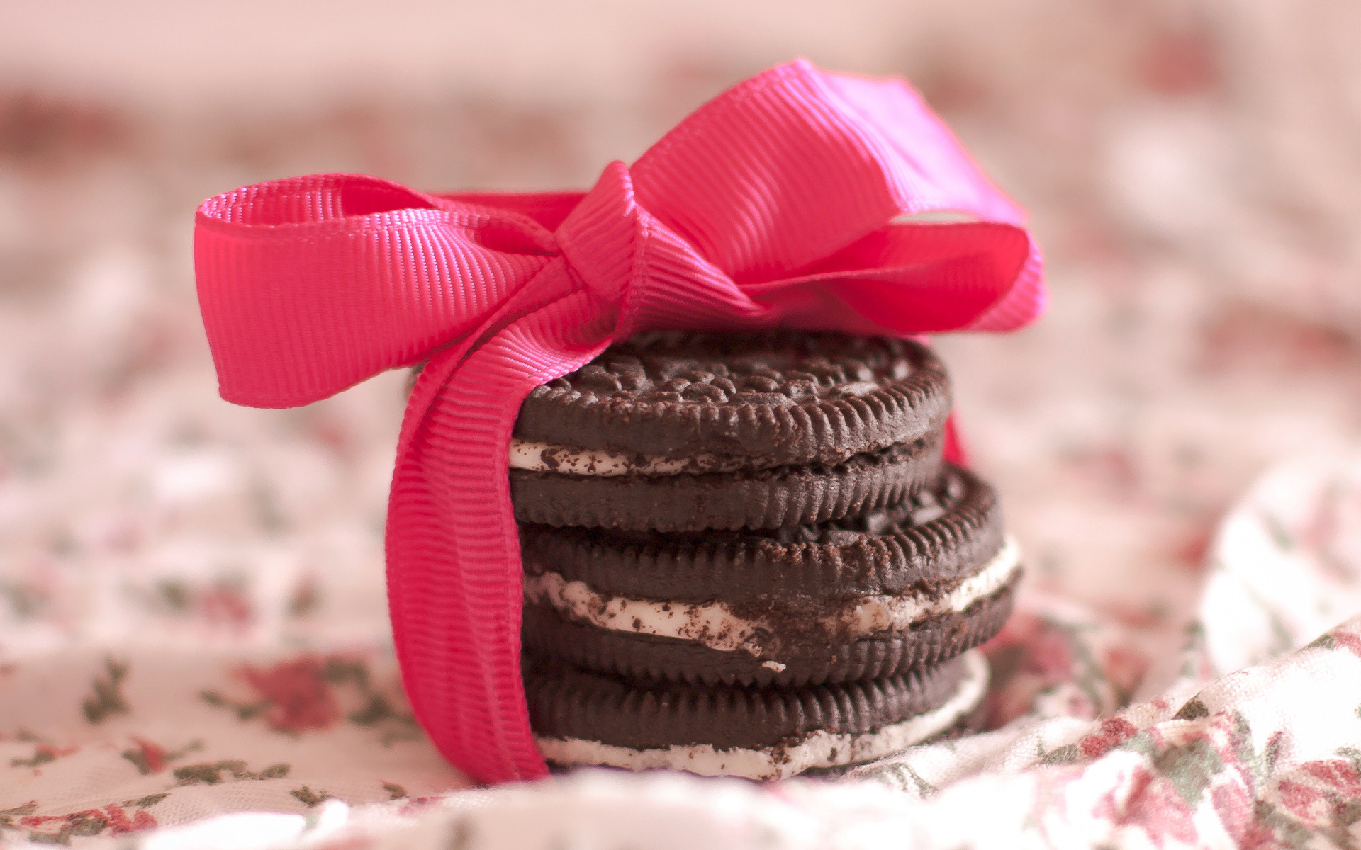 Biscuit HD Wallpaper | Background Image | 1920x1200 | ID:337290 ...