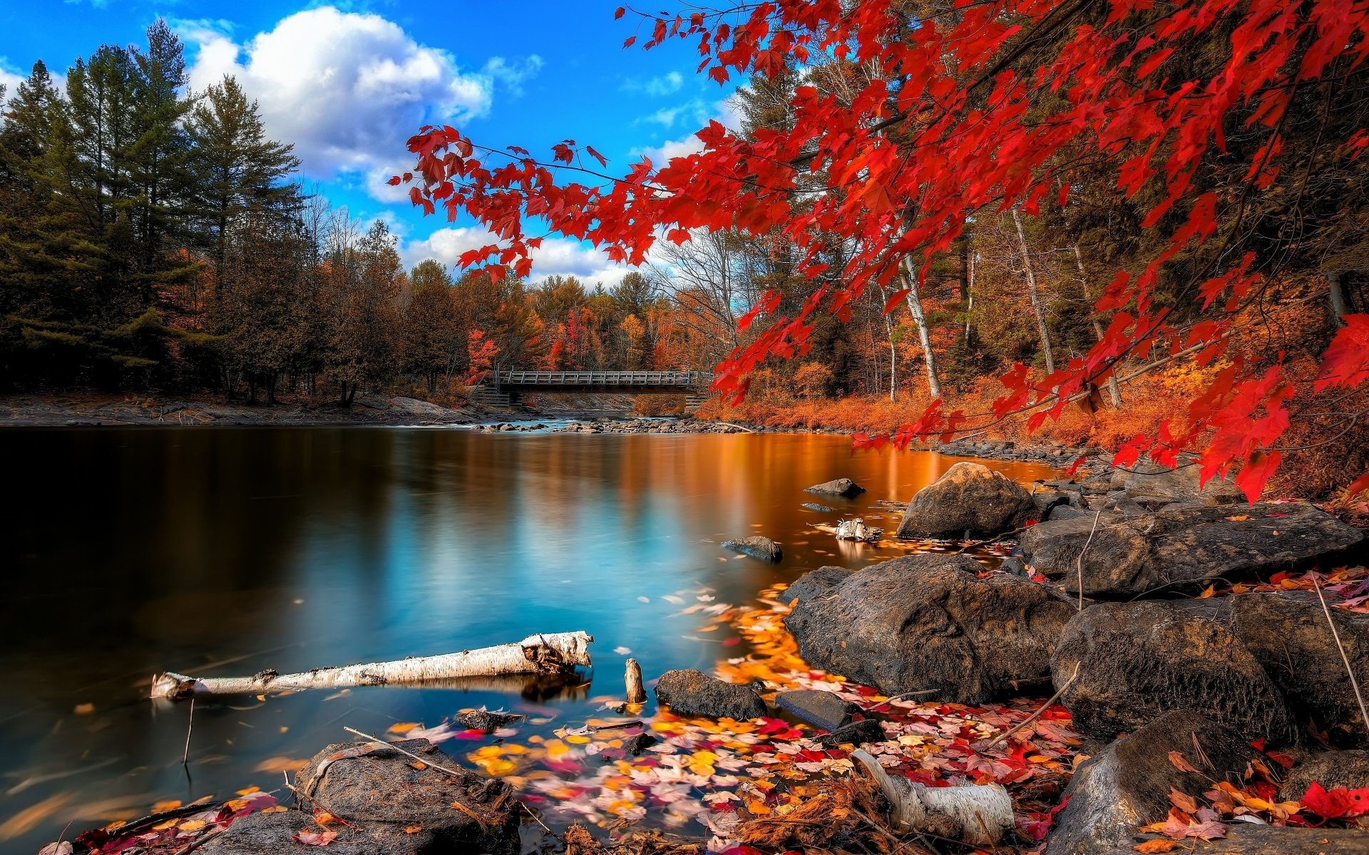 Earth - Fall  Bridge Lake Water Leaf Nature Tree Rock Beautiful Wallpaper
