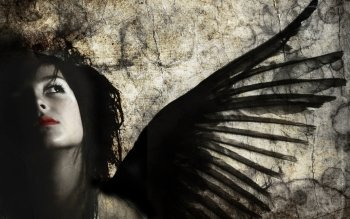 Dark - Angel Wallpapers and Backgrounds ID : 340694