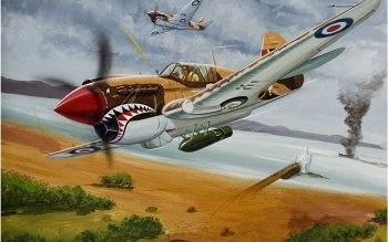13 Curtiss P 40 Warhawk HD Wallpapers