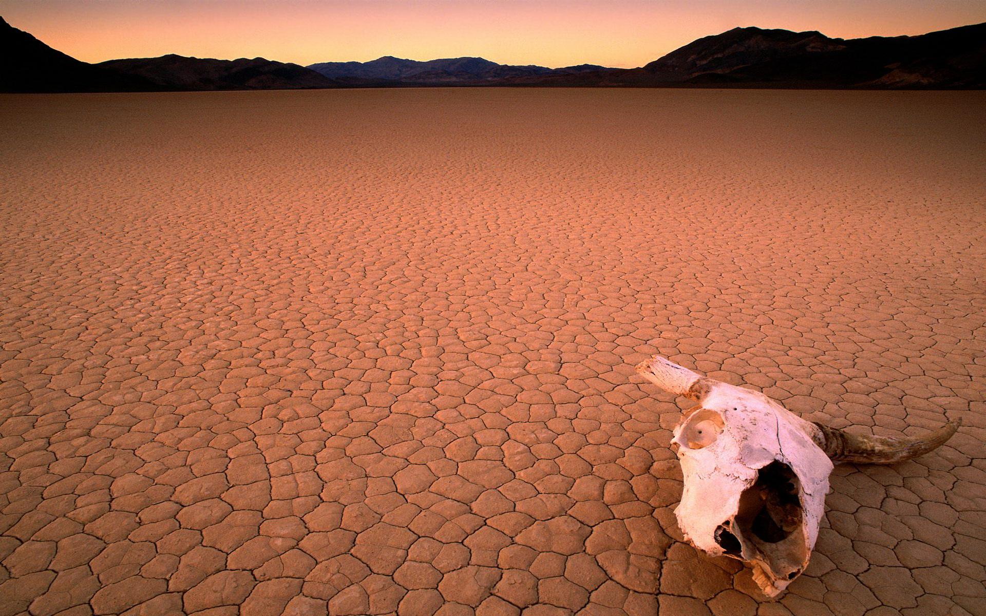 Earth - Desert  Wallpaper