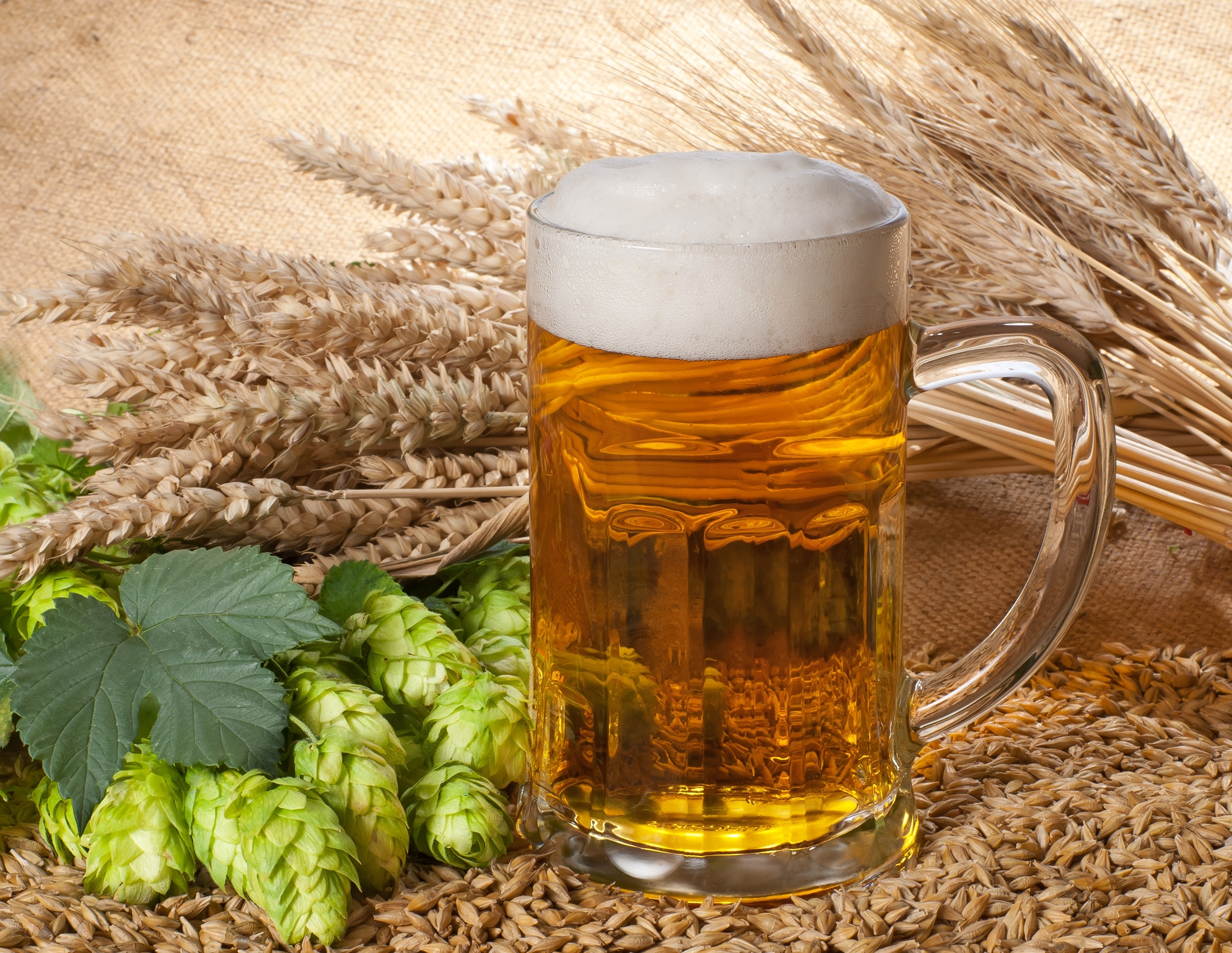 266 beer hd wallpapers background images wallpaper abyss page 2