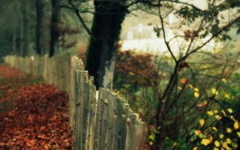 Man Made - Fence Wallpapers and Backgrounds ID : 347193