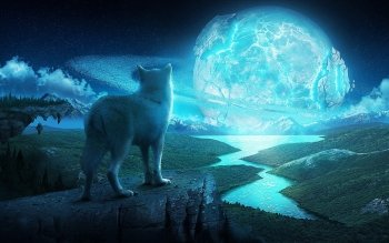 Fantasy - Animal Wallpapers and Backgrounds ID : 347987