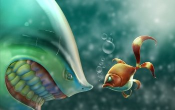 Animal - Fish Wallpapers and Backgrounds ID : 350904