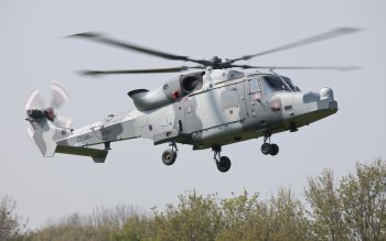 Military - AgustaWestland AW159 Wildcat Wallpapers and Backgrounds ID : 354899