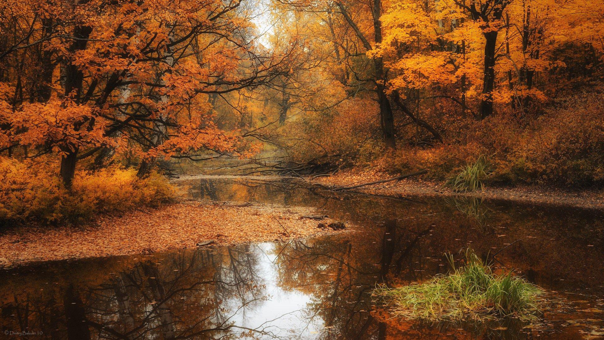 Земля/природа - Осень  Обои